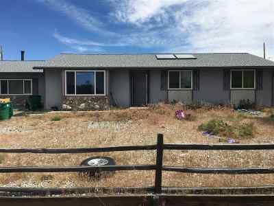 Reno Single Family Home For Sale: 3895 Peregrine Circle