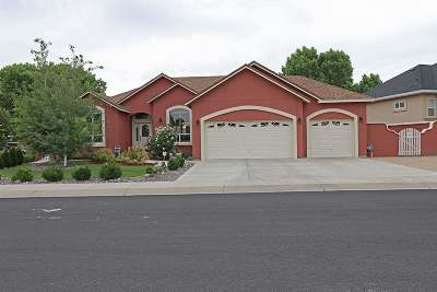 Fernley Single Family Home Active/Pending-Loan: 248 Mary Lou Lane