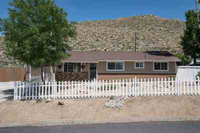 Reno Single Family Home For Sale: 315 Palace Dr.