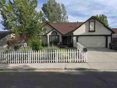 Carson City Single Family Home For Sale: 4551 E Fifth