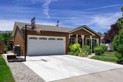 Carson City Single Family Home For Sale: 1808 N Nevada St.