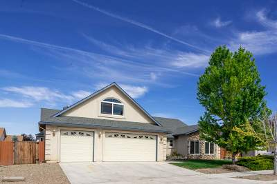 Gardnerville Single Family Home For Sale: 1363 Macenna