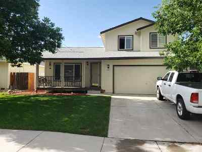 Gardnerville Single Family Home For Sale: 1344 Cahi Circle