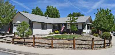 Carson City Single Family Home For Sale: 696 Armory Lane