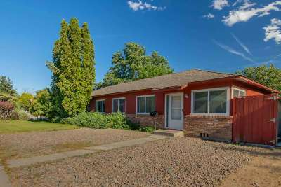 Washoe County Multi Family Home For Sale: 735 19th