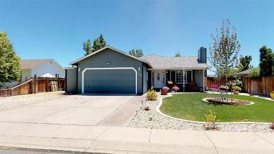 Gardnerville Single Family Home For Sale: 1315 Leonard Rd
