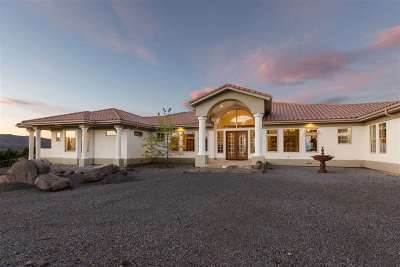 Reno Single Family Home For Sale: 70 Bear Mountain Pl