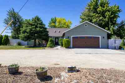 Gardnerville Single Family Home Active/Pending-Loan: 1981 Pinto Circle