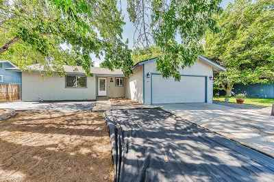 Carson City Single Family Home For Sale: 940 Tourmaline Dr.