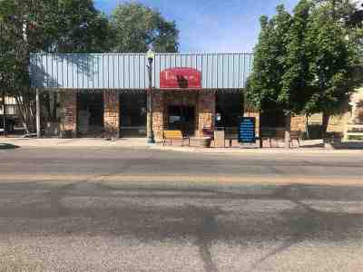 Lovelock NV Commercial For Sale: $219,900