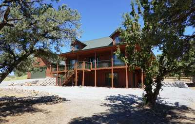 Reno Single Family Home For Sale: 2230 Agate Road