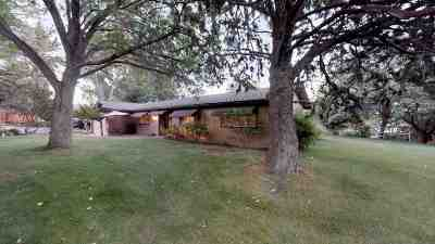 Reno Single Family Home For Sale: 1510 Coleman Drive