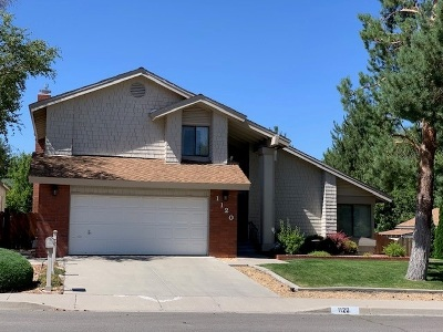 Carson City Single Family Home For Sale: 1120 Cabrolet