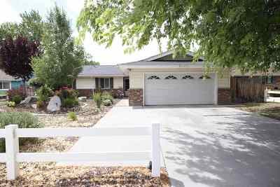 Carson City Single Family Home Active/Pending-Loan: 609 Adaline