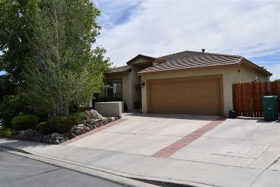 Washoe County Single Family Home For Sale: 3260 Cityview Ter