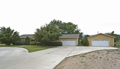 Gardnerville Single Family Home For Sale: 782 Scout