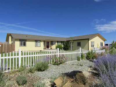 Yerington NV Manufactured Home For Sale: $263,000
