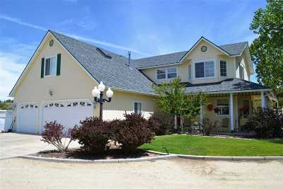 Gardnerville Single Family Home For Sale: 986 Farrier
