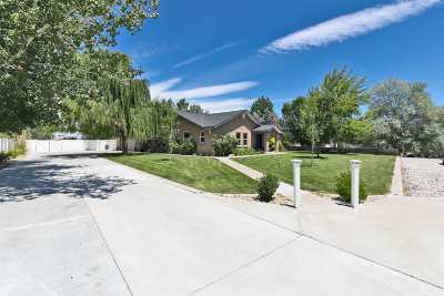 Fallon Single Family Home Active/Pending-House: 1400 Golden Park Way