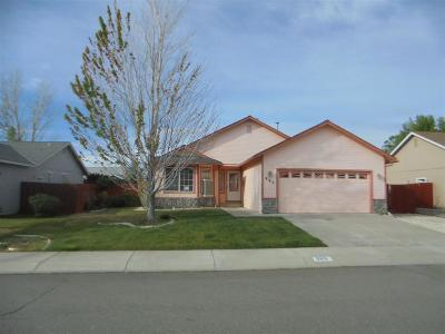Carson City Single Family Home For Sale: 985 Sunview Dr