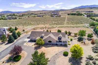 Gardnerville Single Family Home For Sale: 1879 Crockett Lane