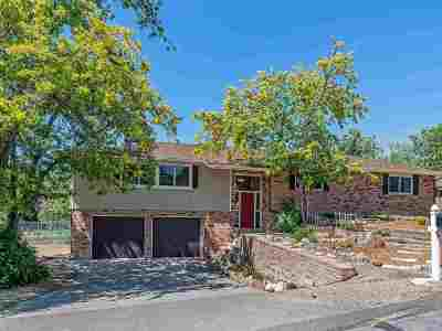 Reno Single Family Home For Sale: 130 Drew Drive