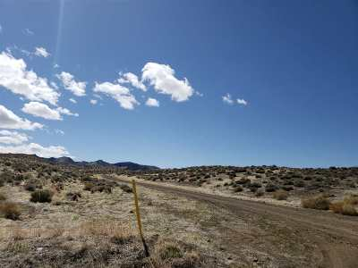 Fernley Residential Lots & Land For Sale: Sea Biscuit 19