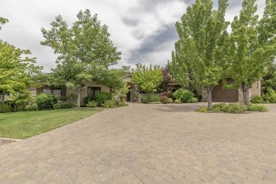 Reno Single Family Home For Sale: 4130 Latigo Court
