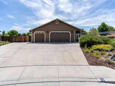 Sparks Single Family Home New: 1090 Golden Plover Court