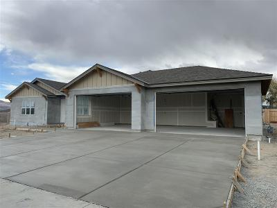 Fernley Single Family Home For Sale: 901 Brigit Circle