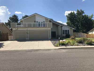 Reno Single Family Home For Sale: 855 Twin Pines