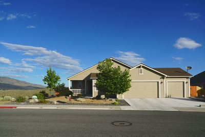 Reno Single Family Home For Sale: 568 Beckwourth