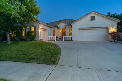 Reno Single Family Home For Sale: 8160 Willow Ranch Trail