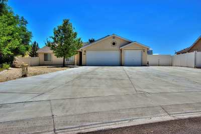 Fernley Single Family Home For Sale: 1421 Red Bluffs Way