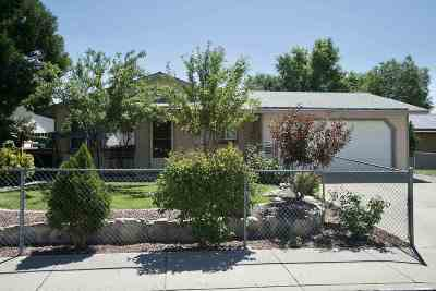 Carson City Single Family Home For Sale: 1211 Monte Rosa Dr.