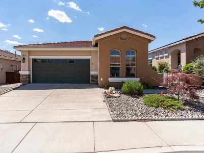 Sparks Single Family Home For Sale: 2097 Meritage Ct