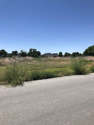 Fallon Residential Lots & Land For Sale: 720 River Village Dr