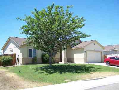 Silver Springs Single Family Home New: 3085 Snowberry