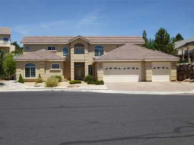 Washoe County Single Family Home New: 975 Stadium View Ct.