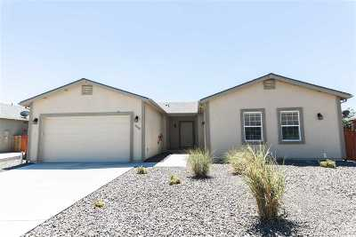 Reno Single Family Home For Sale: 18504 Silverbell Ct