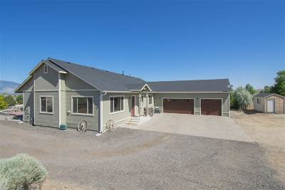 Gardnerville Single Family Home For Sale: 610 Dark Horse Court