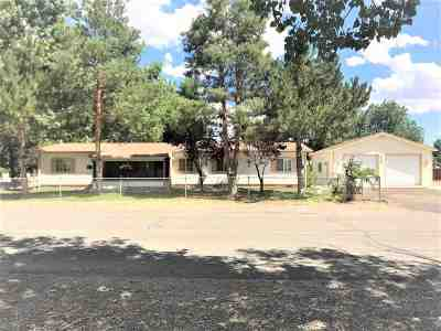 Winnemucca Manufactured Home For Sale: 6415 Nugget Drive