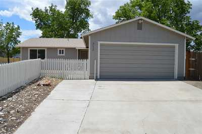 Fernley Single Family Home New: 313 Appaloosa Way