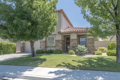 Washoe County Single Family Home New: 10588 Fort Morgan