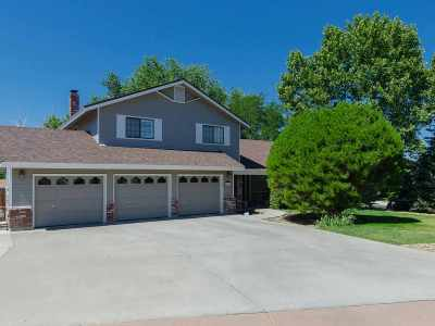Washoe County Single Family Home New: 5705 Lone Horse