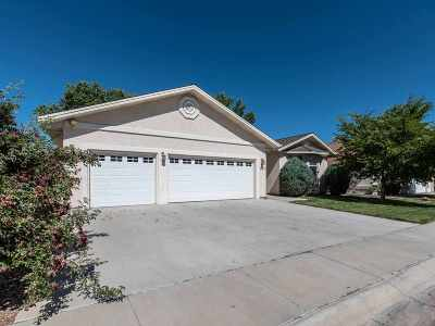 Fernley Single Family Home For Sale: 119 Desert Lakes Drive