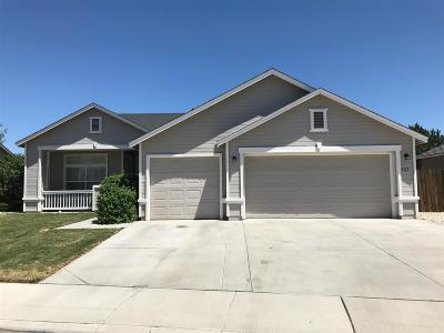 Fernley Single Family Home New: 382 Cook Way