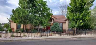 Washoe County Single Family Home New: 2699 Rodney