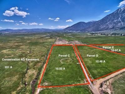 Gardnerville Residential Lots & Land For Sale: Parcel C Run Around Ranch