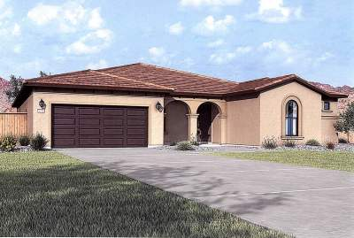 Washoe County Single Family Home New: 3184 Vecchio Dr. #Lot 902